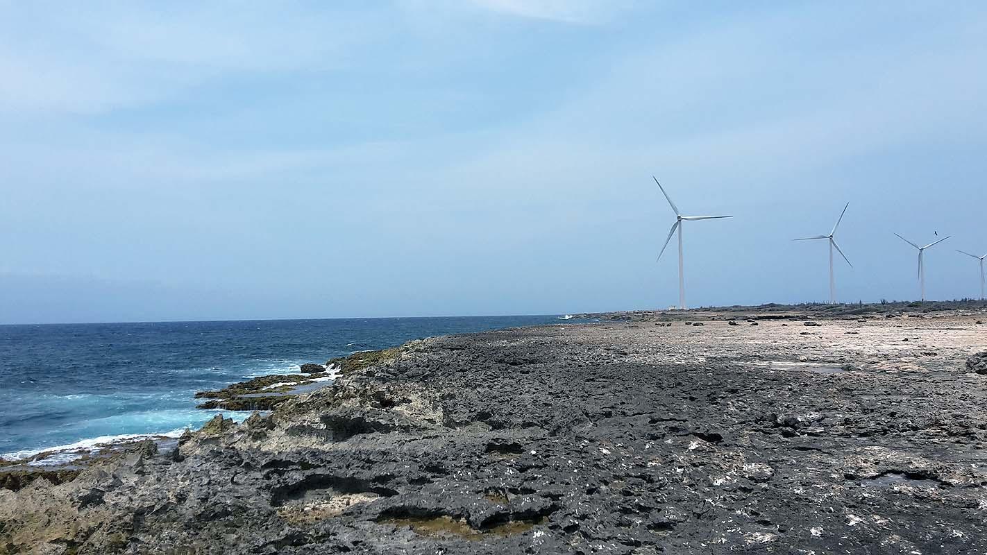 Curacao Westküste - hier lebt und wächst nichts