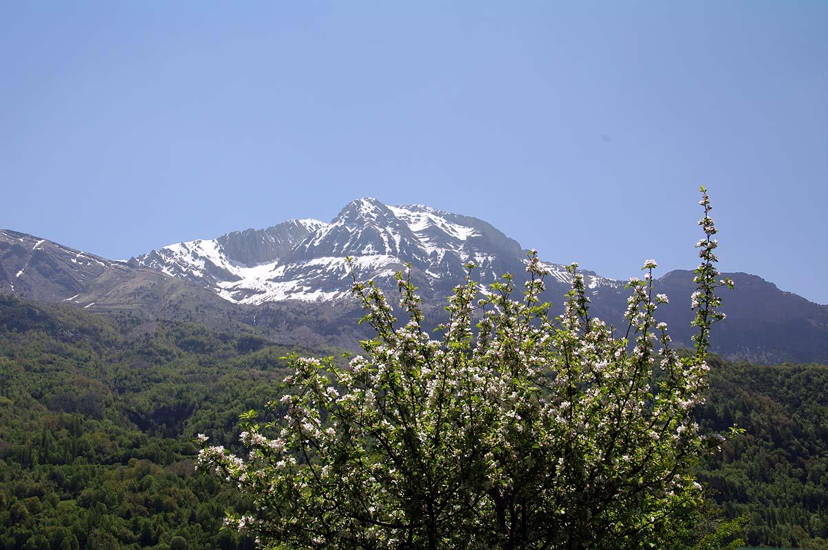 Pyrenäen im Frühling