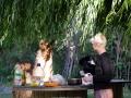 Lama schaut Daniela beim Kochen zu