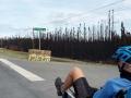 Waldbrände gibts auch hier zu genüge