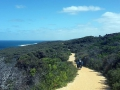 Radlweg an der Great Ocean Road