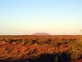 Morgenstimmung mit Blick auf Uluru
