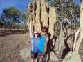 Termitenhügel en masse