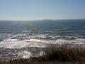 Pazifik (sehr kalt) an der Washington-Küste